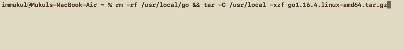 Go Setup Linux
